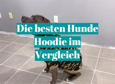 Die besten Hunde Hoodie im Vergleich