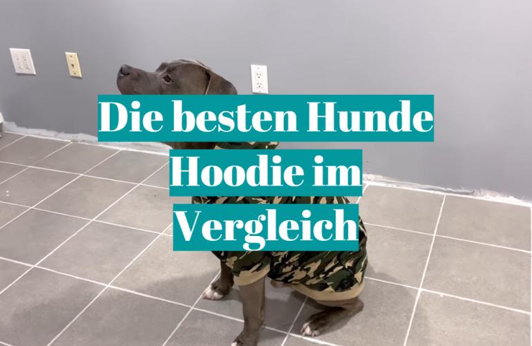 Hunde Hoodie Test 2021: Die besten 5 Hunde Hoodie im Vergleich