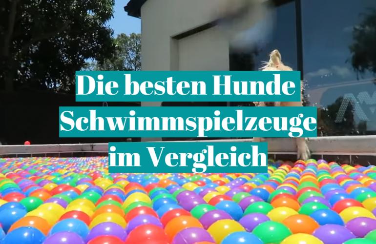 Hunde Schwimmspielzeug Test 2021: Die besten 5 Hunde Schwimmspielzeuge im Vergleich