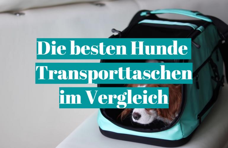 Hunde Transporttasche Test 2021: Die besten 5 Hunde Transporttaschen im Vergleich